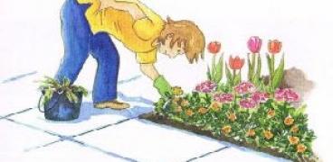 Gartenkalender für die Woche 15