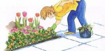 Gartenkalender für die Woche 16