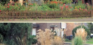Pflanzenschutz im Hausgarten